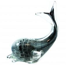 D.Grey/ Black Whale