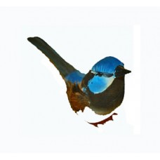 Blue Wren Feathered Birds