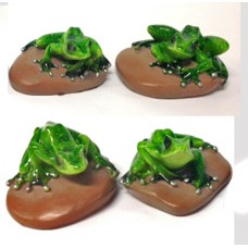 Frogs on Pebbles, 4 Asst.
